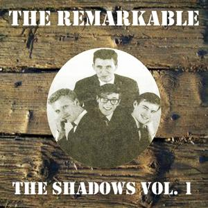 The Remarkable the Shadows Vol 1