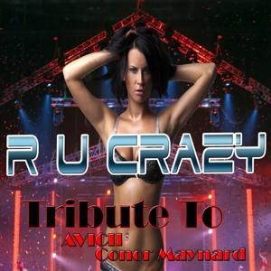 R U Crazy: Tribute to Avicii, Conor Maynard