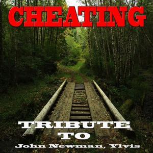 Cheating: John Newman, Ylvis