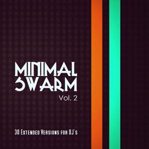 Minimal Swarm, Vol. 2