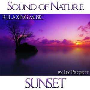 Sound of Nature: Sunset