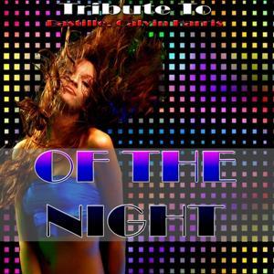 Of the Night: Tribute to Bastille, Calvin Harris