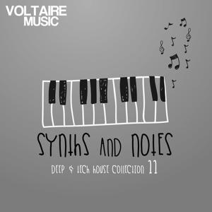 Synths and Notes, Vol. 11 (Deep & Tech House Collection)