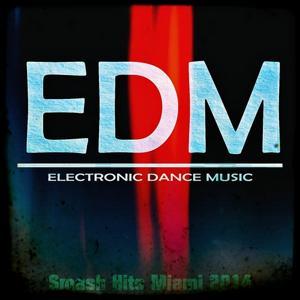 Edm Smash Hits Miami 2014 (35 Top Hits)