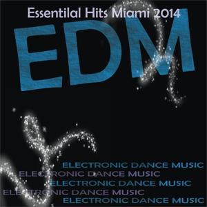 Edm Essentilal Hits Miami 2014 (31 Very Hot Hits)