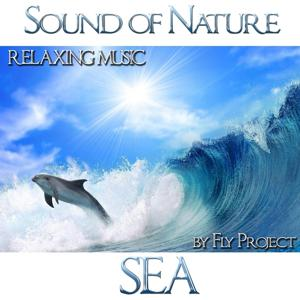 Sound of Nature: Sea