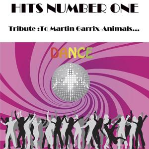 Hits Number One Tribute To : Martin Garrix-Animals...