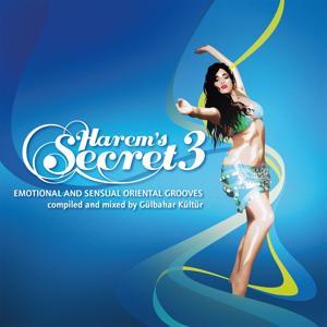 Harem's Secret, Vol. 3 (Compiled By Gülbahar Kültür) (Emotional & Sensual Oriental Grooves)