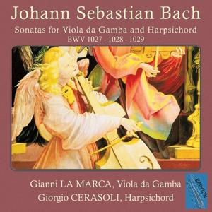 Bach: Sonatas for Viola da Gamba, BWV 1027, 1028 & 1029