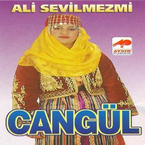 Ali Sevilmezmi