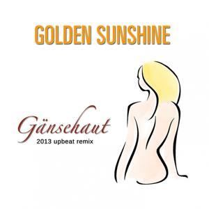 Gänsehaut (2013 upbeat remix)