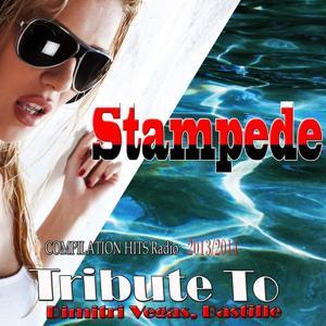 Stampede: Tribute to Dimitri Vegas, Bastille (Compilation Hits Radio 2013 / 2014)