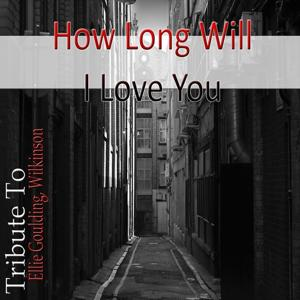 How Long Will I Love You : Tribute To Ellie Goulding, Wilkinson