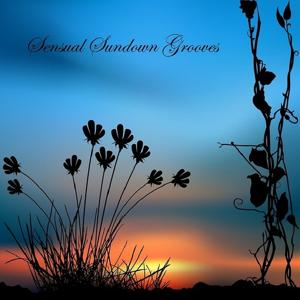 Sensual Sundown Grooves