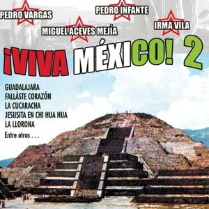 Viva Mexico, Vol. 2