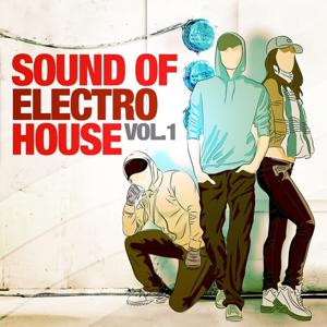 Sound of Electro House, Vol. 1