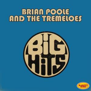 Brian Poole & The Tremeloes: Big Hits