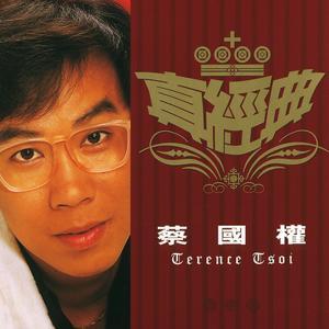 Zhen Jin Dian - Terence Tsoi