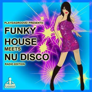 Funky House Meets Nu Disco