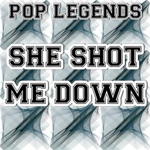 She Shot Me Down - Tribute to David Guetta