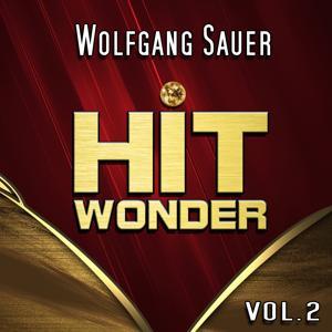 Hit Wonder: Wolfgang Sauer, Vol. 2