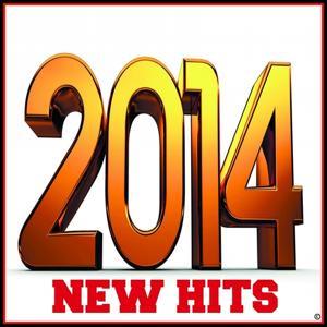 New Hits 2014