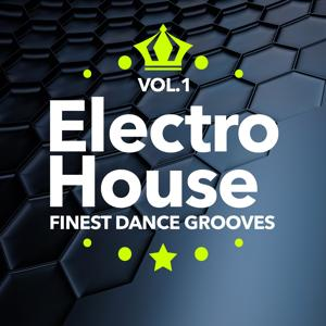Electro House Finest Dance Grooves, Vol.1 (Royal Club Electro)