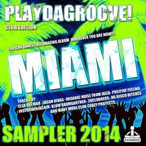 Playdagroove! Miami Sampler 2014 (Club Edition)