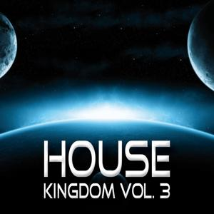 House Kingdom, Vol. 3