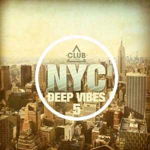 New York City Deep Vibes, Vol. 5