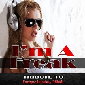 I'm a Freak: Tribute to Enrique Iglesias, Pitbull