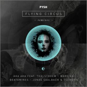 Flying Circus Remixes