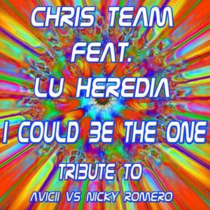 I Could Be the One: Tribute to Avicii VS Nicky Romero