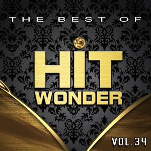 Hit Wonder: The Best Of, Vol. 34