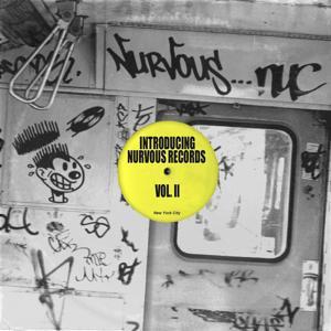 Introducing Nurvous Records Vol II