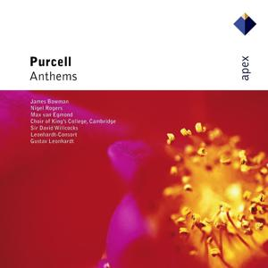 Purcell : Anthems  -  Apex