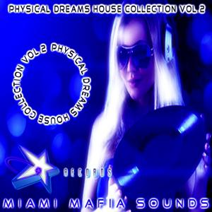Physical Dreams House Collection, Vol. 2
