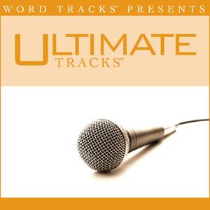 Ultimate Tracks - Hold Fast - as made popular MercyMe [Performance Track]