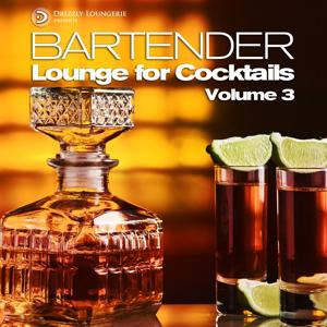 Bartender, Lounge for Cocktails, Vol.3