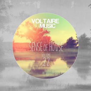 Sense of House, Vol. 22