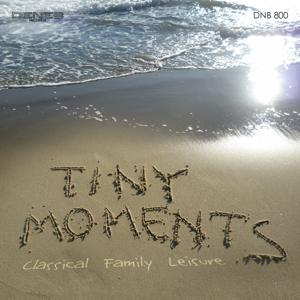 Tiny Moments (Classical Family Leisure)
