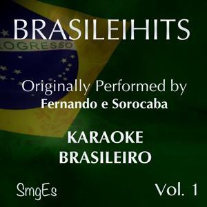 BrasileiHits, Vol. 1 (Karaoke Version) [Originally Performed By Fernando e Sorocaba]