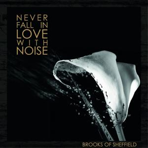Never Fall in Love with Noise