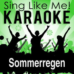 Sommerregen (Karaoke Version)