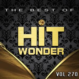Hit Wonder: The Best of, Vol. 270