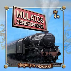 Mulatós Zeneexpressz, Vol. 7 (Magányos Rózsaszál)