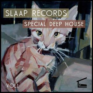 Special Deep House