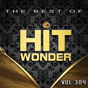 Hit Wonder: The Best Of, Vol. 304
