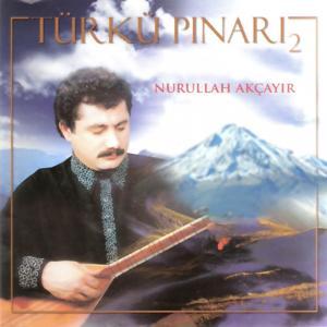 Türkü Pınarı, Vol. 2