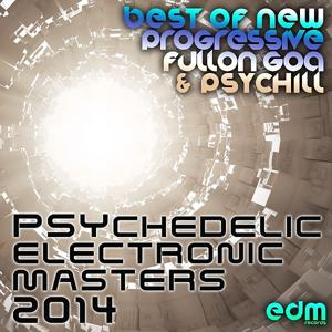 33 Psychedelic Electronic Masters 2014 - Best of New Progressive Fullon Goa & Psychill